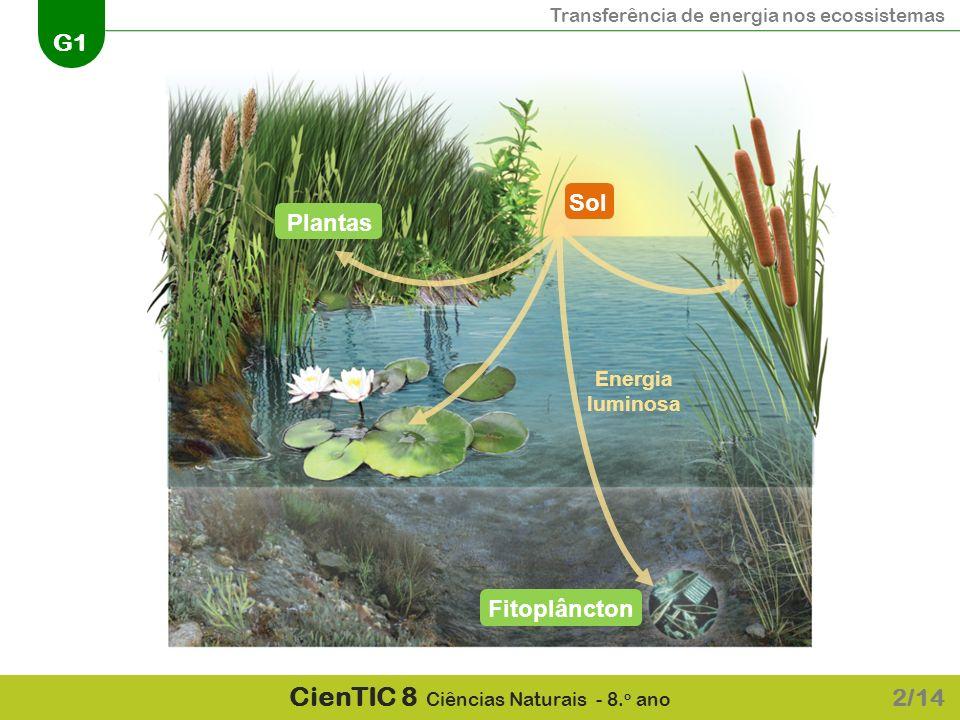 Sol Plantas Energia luminosa Fitoplâncton 2/14
