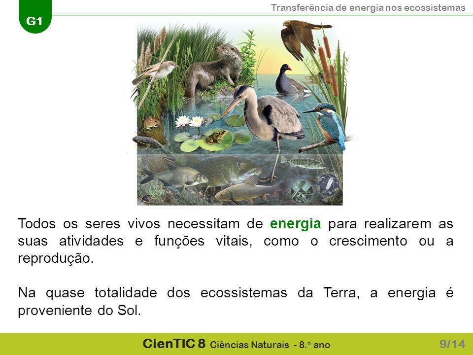 Todos os seres vivos necessitam de energia para realizarem as suas atividades e funções vitais, como o crescimento ou a reprodução.