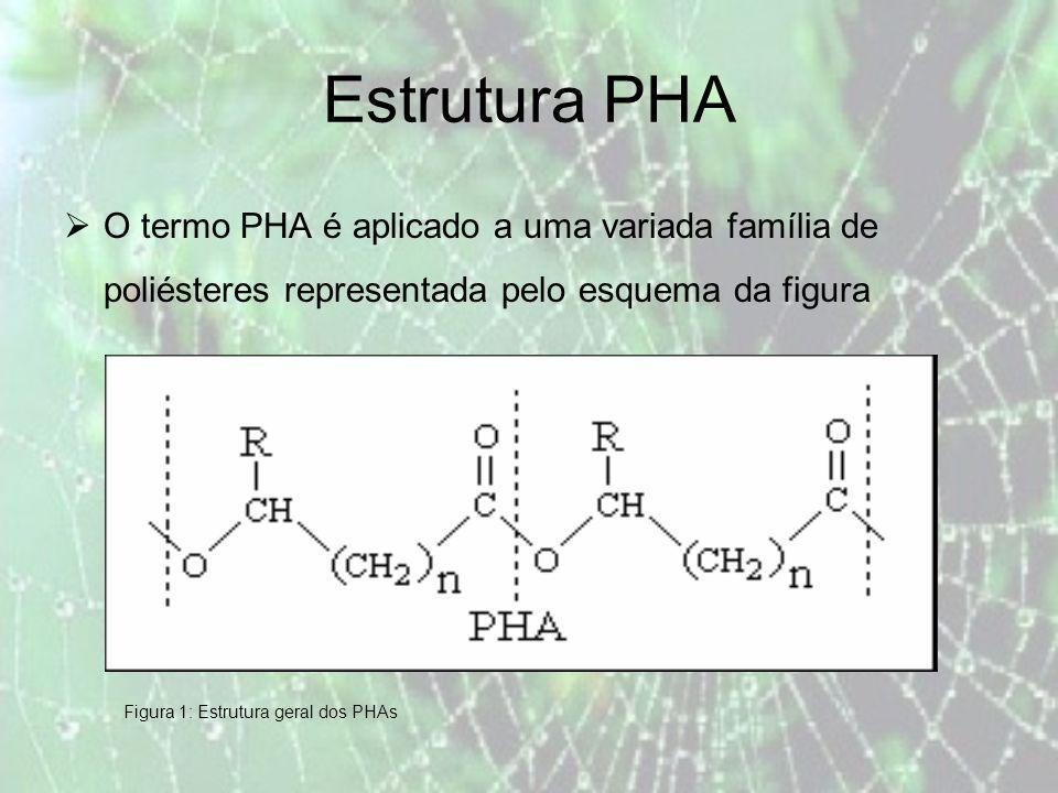 Estrutura PHA O termo PHA é aplicado a uma variada família de poliésteres representada pelo esquema da figura.