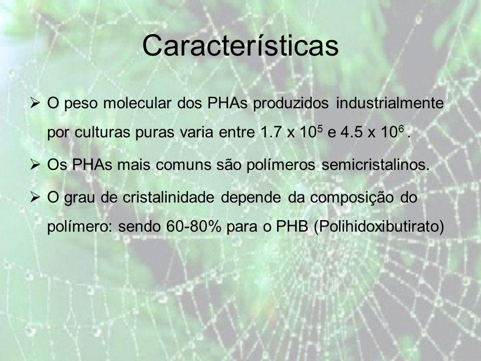 Características O peso molecular dos PHAs produzidos industrialmente por culturas puras varia entre 1.7 x 105 e 4.5 x 106 .