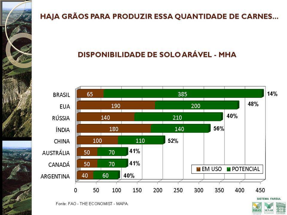DISPONIBILIDADE DE SOLO ARÁVEL - MHA