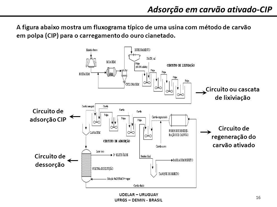 Adsorção em carvão ativado-CIP