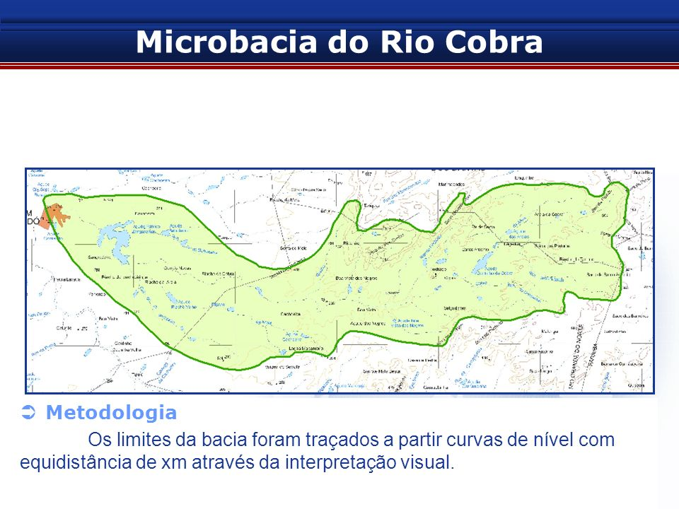 Microbacia do Rio Cobra