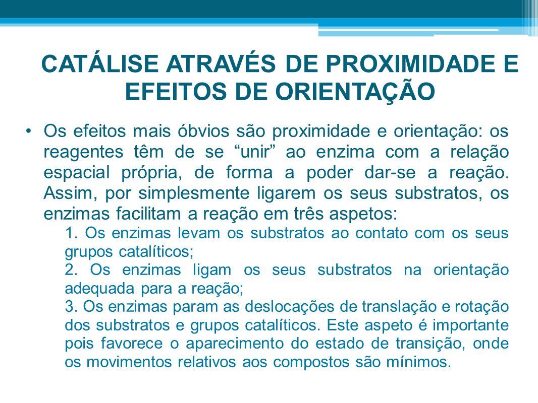 CATÁLISE ATRAVÉS DE PROXIMIDADE E EFEITOS DE ORIENTAÇÃO