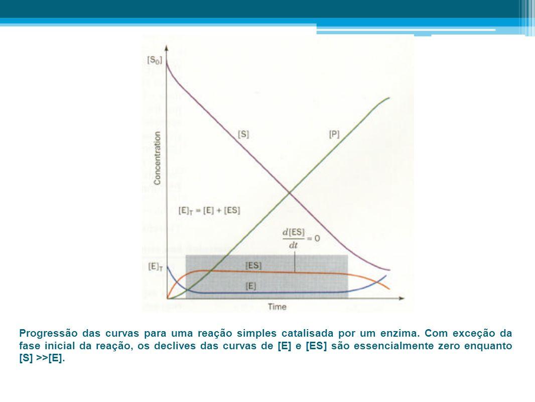 Progressão das curvas para uma reação simples catalisada por um enzima