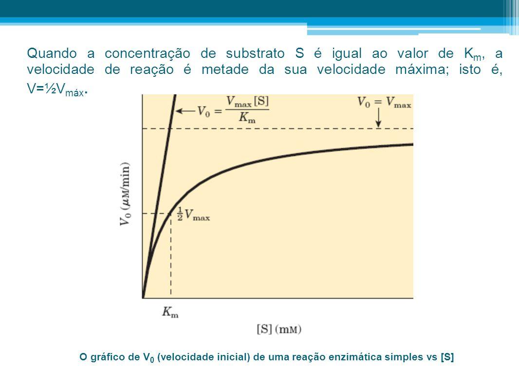 Quando a concentração de substrato S é igual ao valor de Km, a velocidade de reação é metade da sua velocidade máxima; isto é, V=½Vmáx.