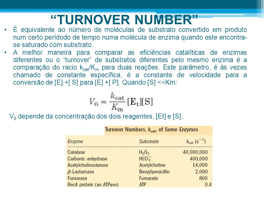 TURNOVER NUMBER