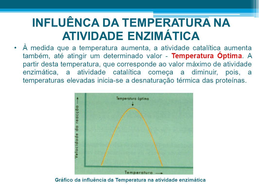 INFLUÊNCA DA TEMPERATURA NA ATIVIDADE ENZIMÁTICA