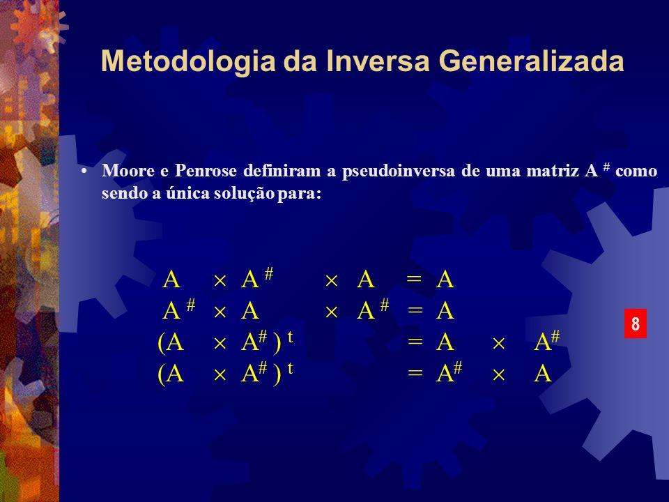 Metodologia da Inversa Generalizada