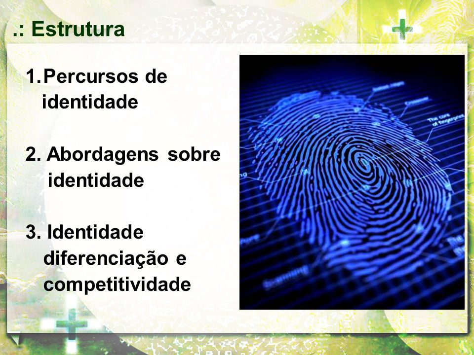 .: Estrutura Percursos de identidade 2. Abordagens sobre