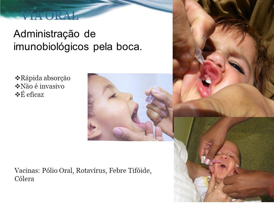 VIA ORAL Administração de imunobiológicos pela boca. Rápida absorção
