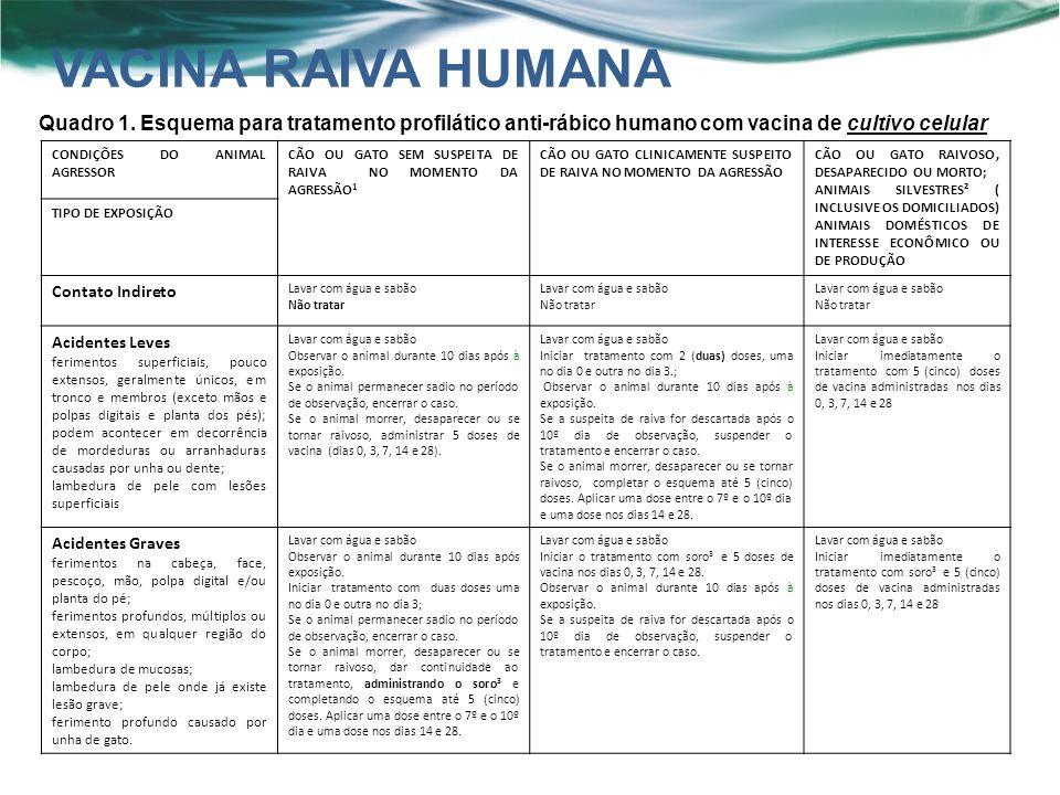 VACINA RAIVA HUMANA Quadro 1. Esquema para tratamento profilático anti-rábico humano com vacina de cultivo celular.
