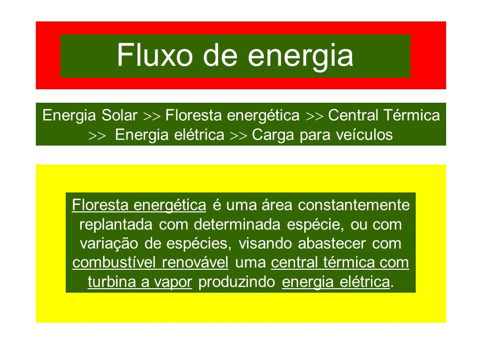 Fluxo de energia Energia Solar  Floresta energética  Central Térmica  Energia elétrica  Carga para veículos.