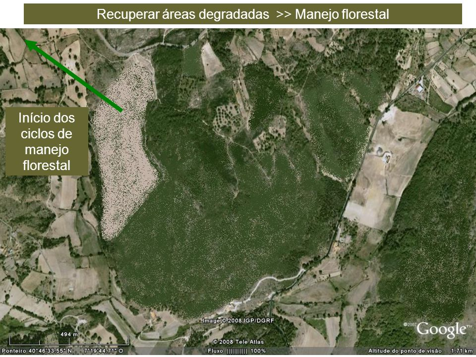 Recuperar áreas degradadas >> Manejo florestal