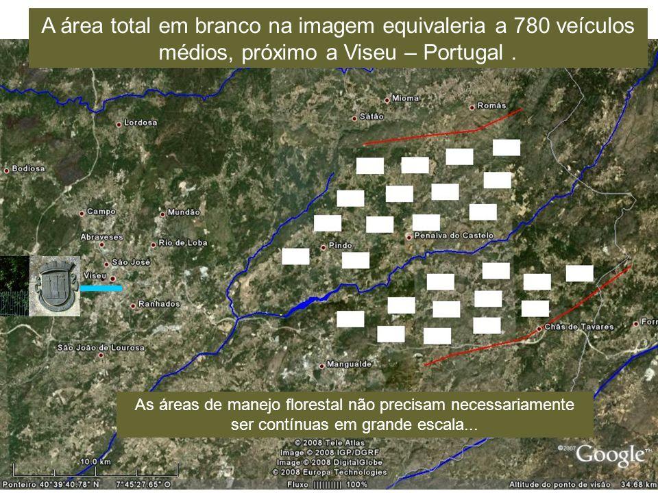 A área total em branco na imagem equivaleria a 780 veículos médios, próximo a Viseu – Portugal .