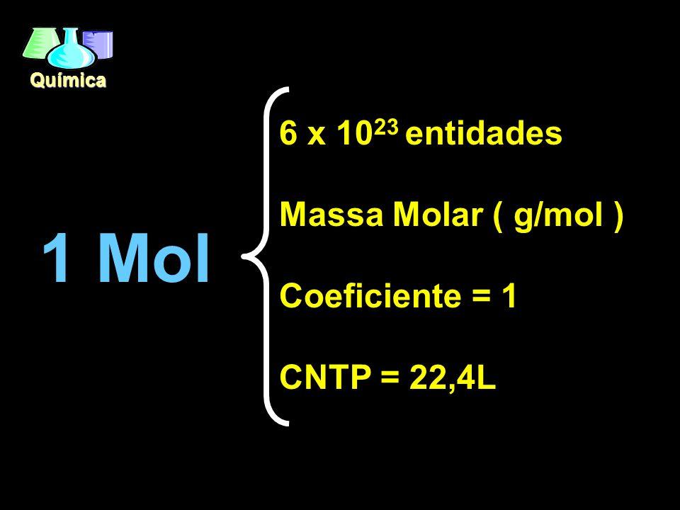 1 Mol 6 x 1023 entidades Massa Molar ( g/mol ) Coeficiente = 1