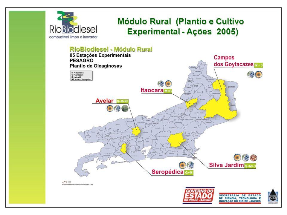 Módulo Rural (Plantio e Cultivo Experimental - Ações 2005)