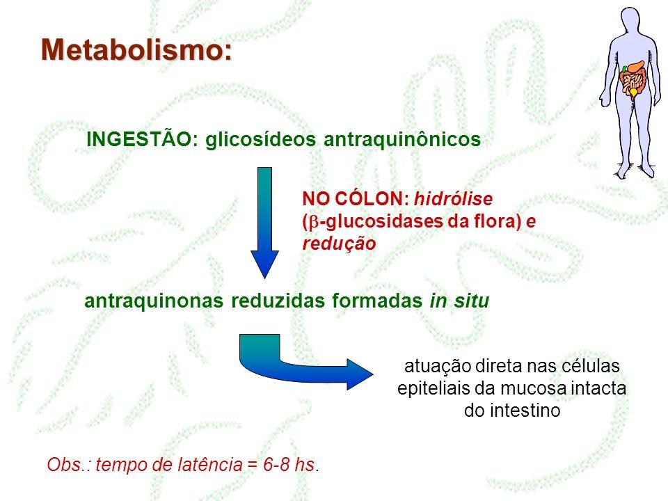 Metabolismo: INGESTÃO: glicosídeos antraquinônicos