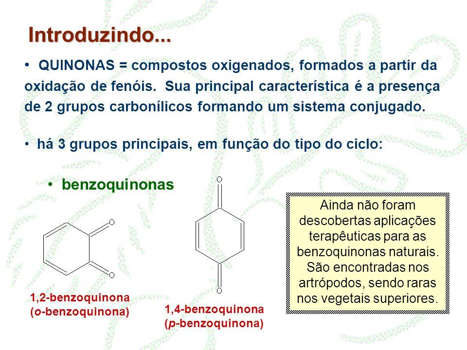 1,2-benzoquinona (o-benzoquinona) 1,4-benzoquinona (p-benzoquinona)