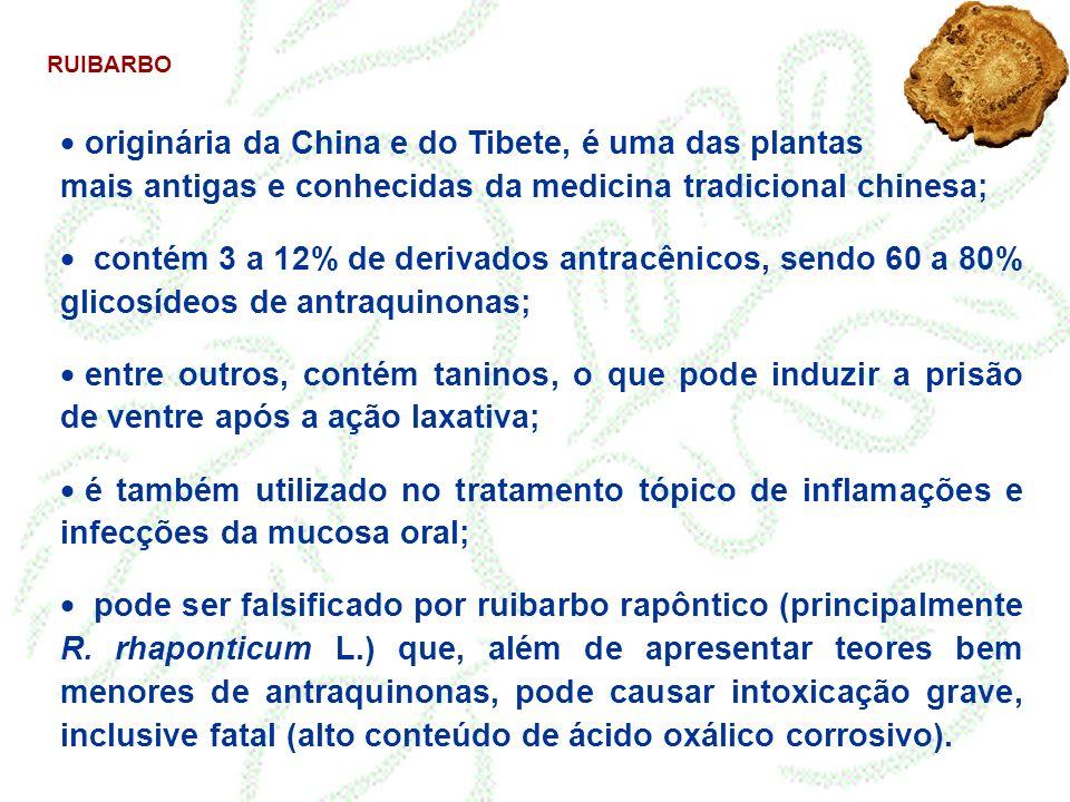 RUIBARBO originária da China e do Tibete, é uma das plantas mais antigas e conhecidas da medicina tradicional chinesa;