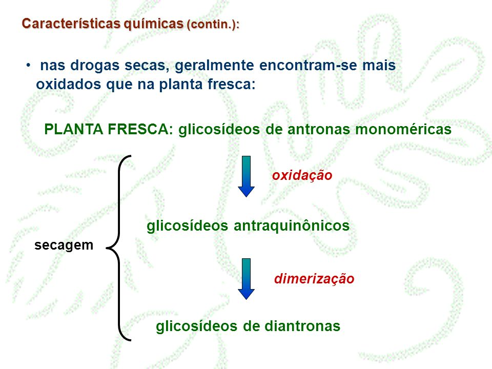 PLANTA FRESCA: glicosídeos de antronas monoméricas