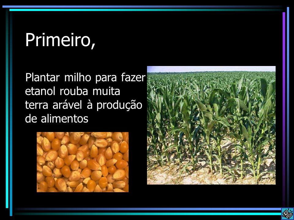 Primeiro, Plantar milho para fazer etanol rouba muita terra arável à produção de alimentos