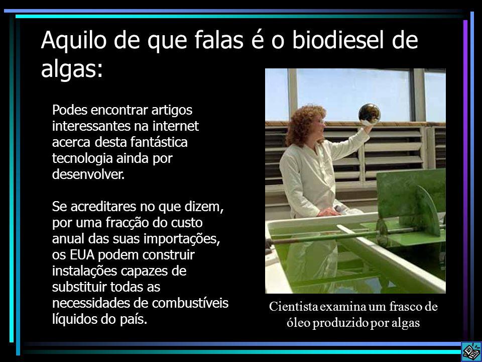 Aquilo de que falas é o biodiesel de algas: