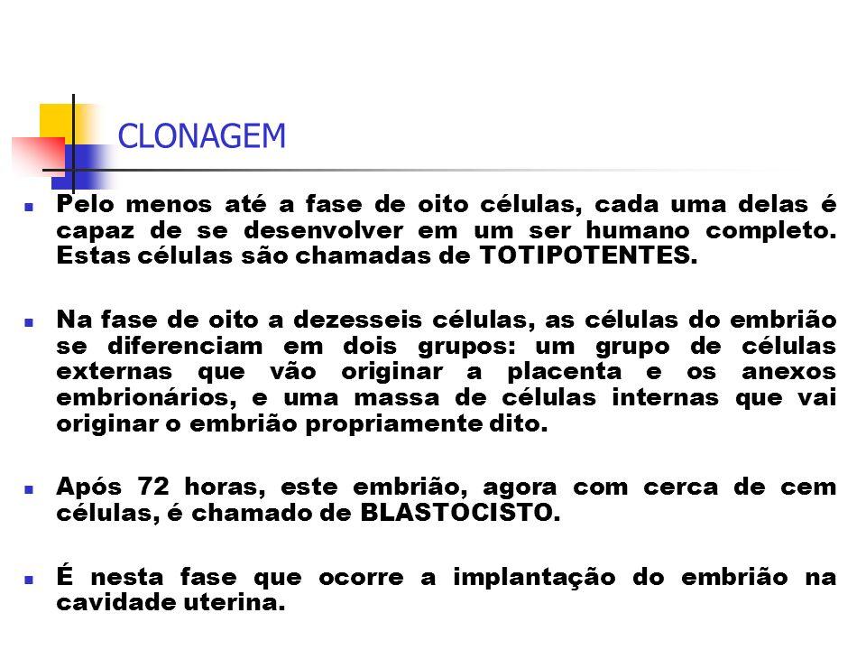 CLONAGEM