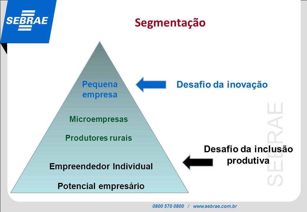 Desafio da inclusão produtiva Empreendedor Individual