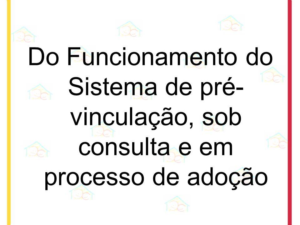 Do Funcionamento do Sistema de pré-vinculação, sob consulta e em processo de adoção