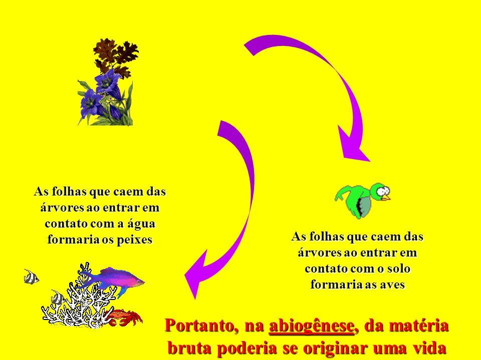 Portanto, na abiogênese, da matéria bruta poderia se originar uma vida