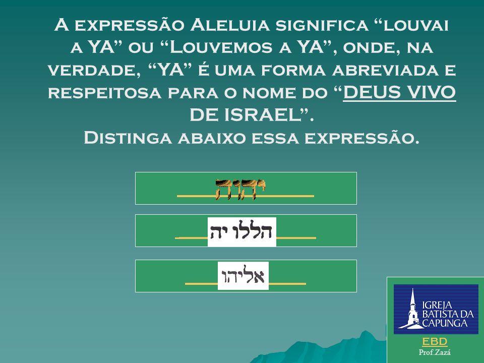 A expressão Aleluia significa louvai a YA ou Louvemos a YA , onde, na verdade, YA é uma forma abreviada e respeitosa para o nome do DEUS VIVO DE ISRAEL . Distinga abaixo essa expressão.