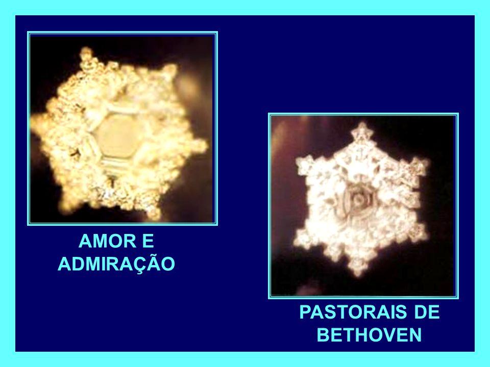 AMOR E ADMIRAÇÃO PASTORAIS DE BETHOVEN