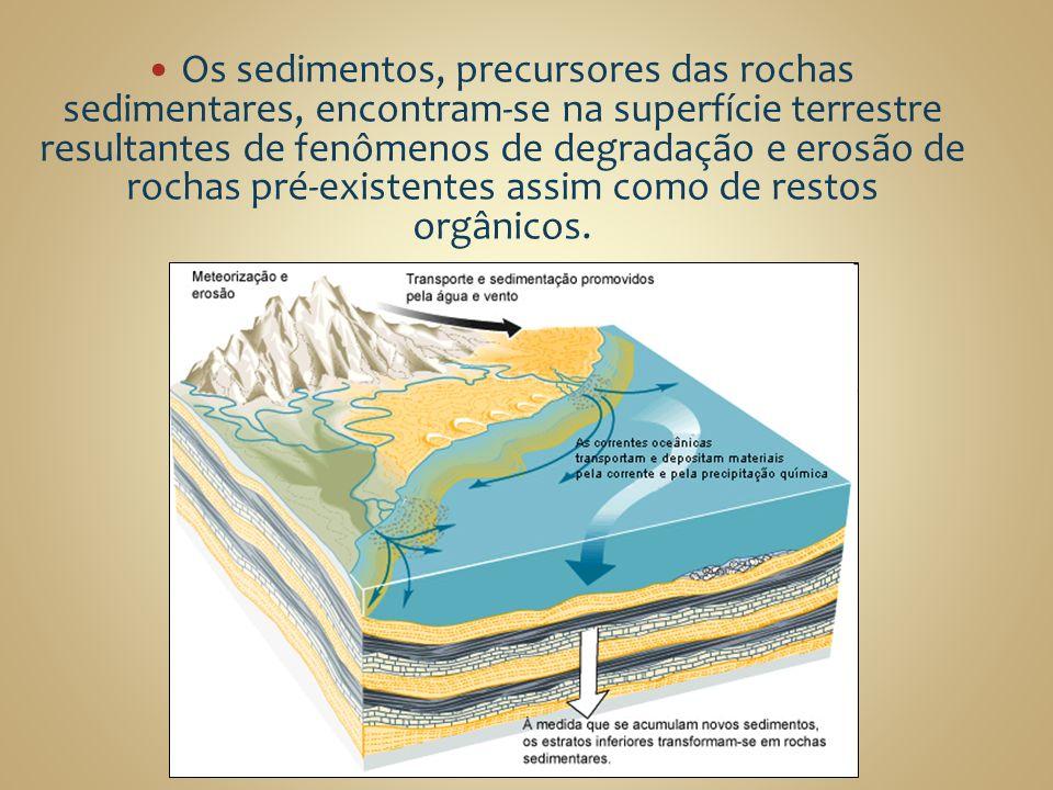 Os sedimentos, precursores das rochas sedimentares, encontram-se na superfície terrestre resultantes de fenômenos de degradação e erosão de rochas pré-existentes assim como de restos orgânicos.