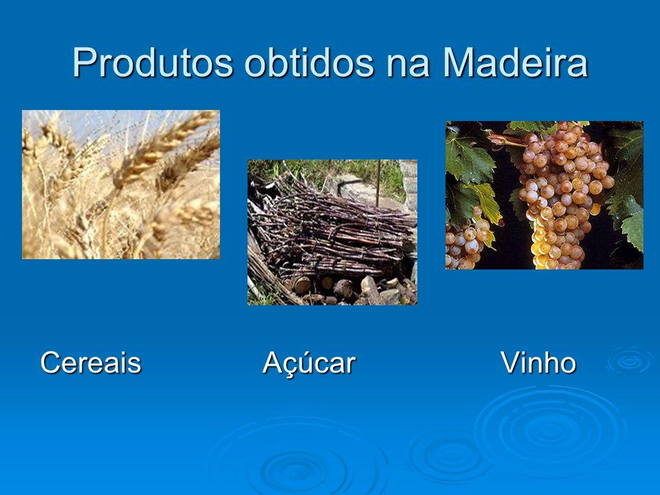 Produtos obtidos na Madeira