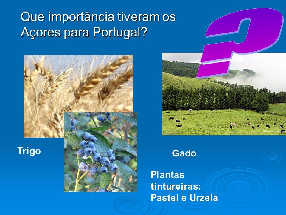 Que importância tiveram os Açores para Portugal Trigo Gado