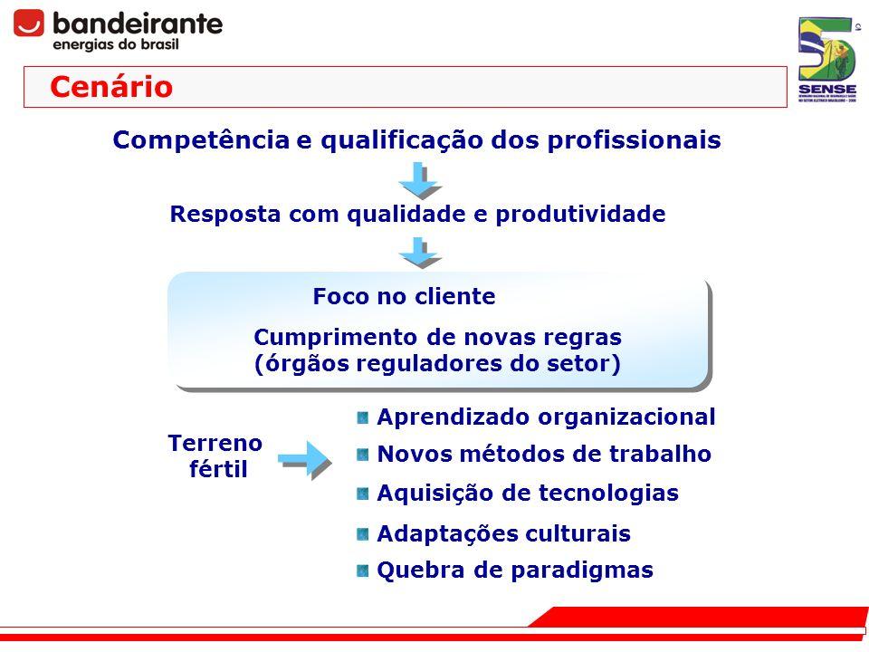Cenário Competência e qualificação dos profissionais