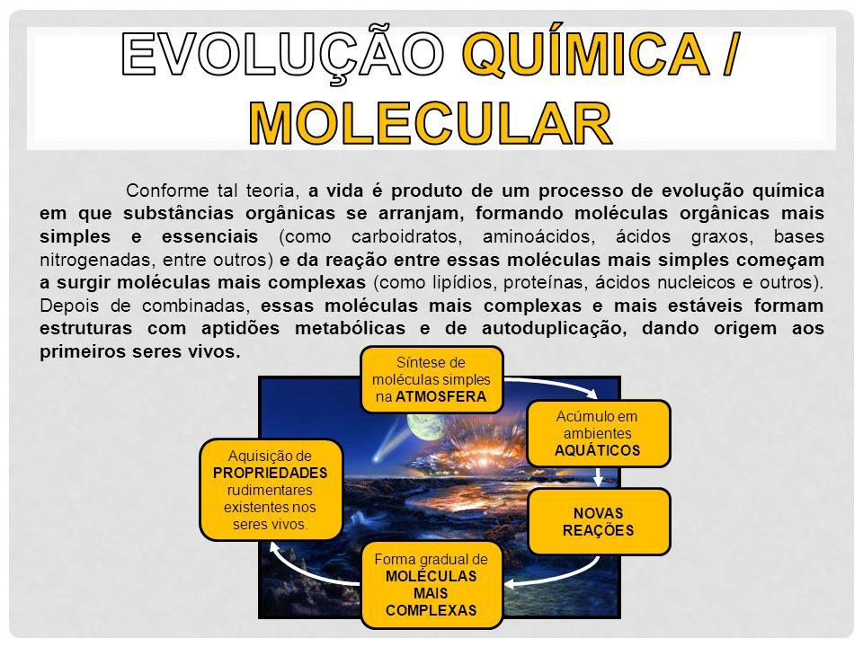 evolução química / molecular