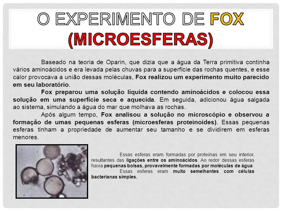 O Experimento de Fox (Microesferas)