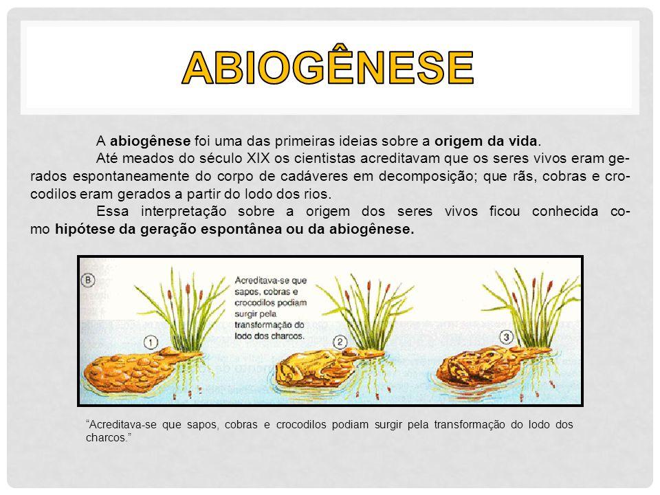 Abiogênese A abiogênese foi uma das primeiras ideias sobre a origem da vida.