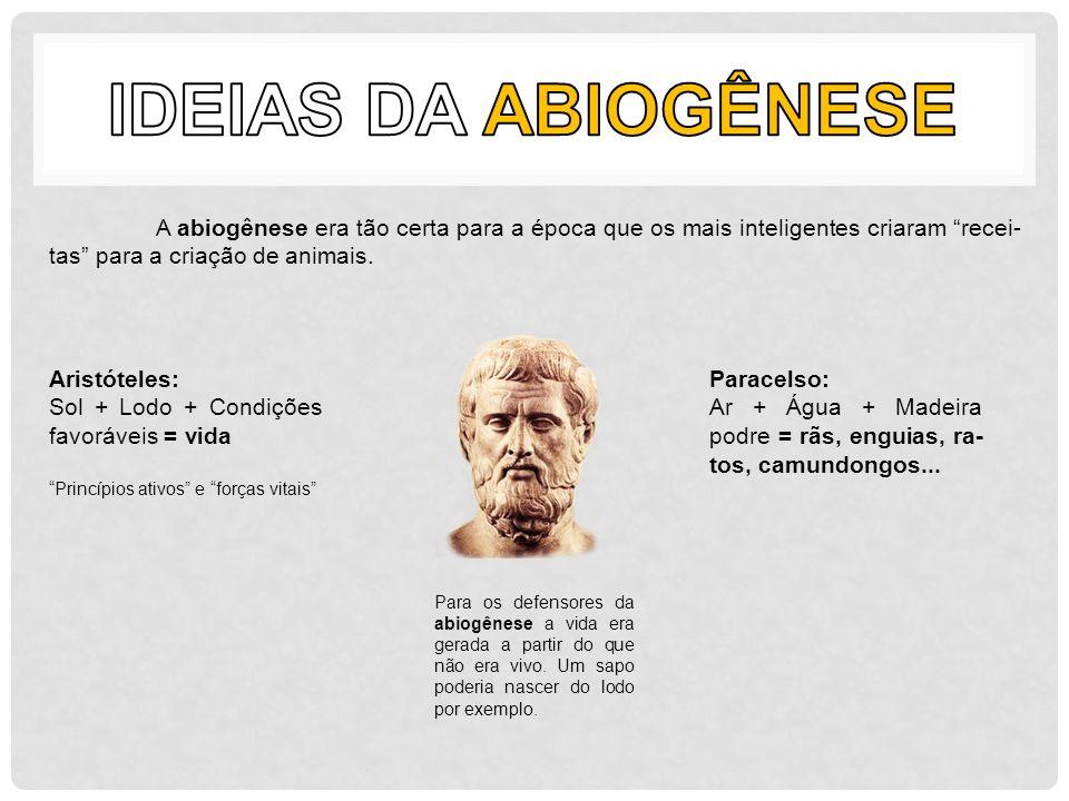 Ideias da Abiogênese A abiogênese era tão certa para a época que os mais inteligentes criaram recei-tas para a criação de animais.
