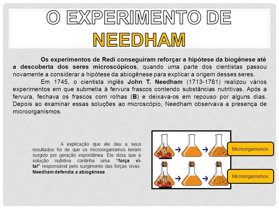 O Experimento de Needham