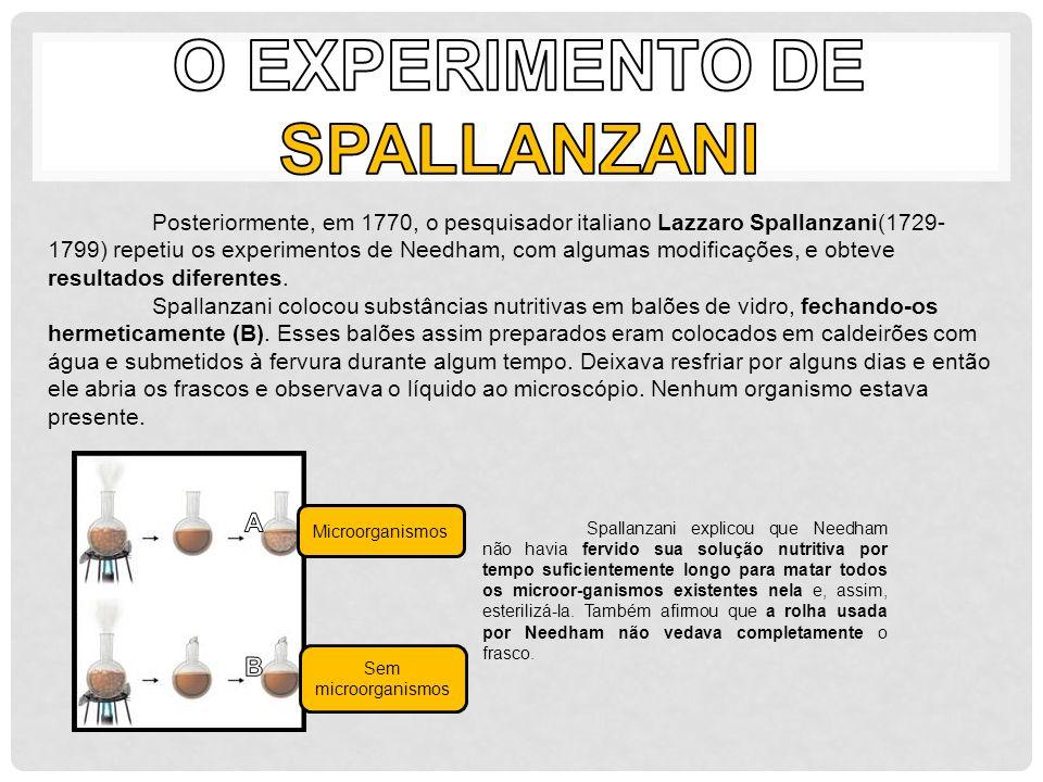 O Experimento de Spallanzani