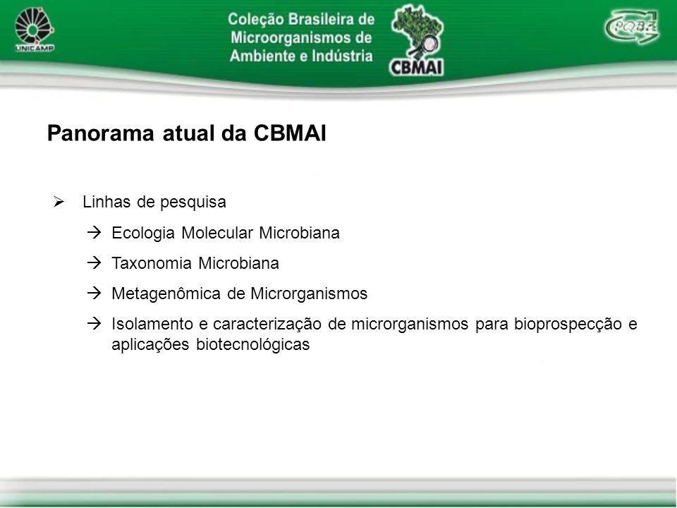 Panorama atual da CBMAI