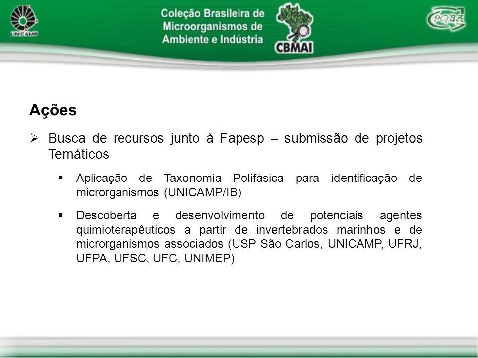 Ações Busca de recursos junto à Fapesp – submissão de projetos Temáticos.