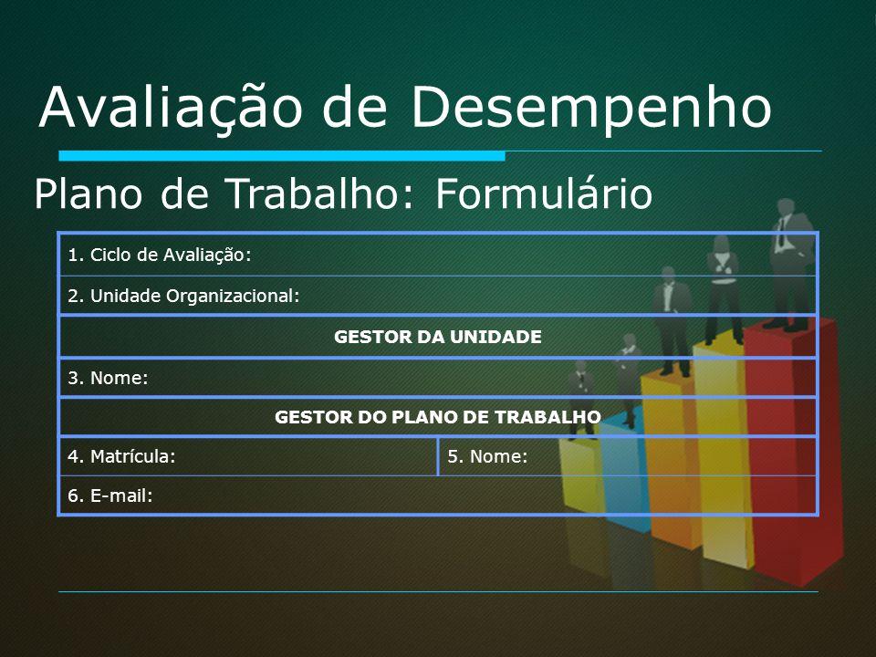 GESTOR DO PLANO DE TRABALHO