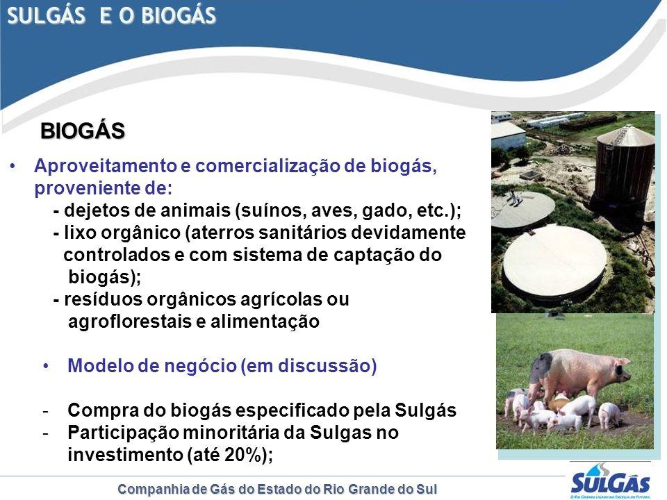 SULGÁS E O BIOGÁS BIOGÁS