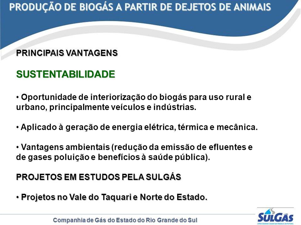 PRODUÇÃO DE BIOGÁS A PARTIR DE DEJETOS DE ANIMAIS
