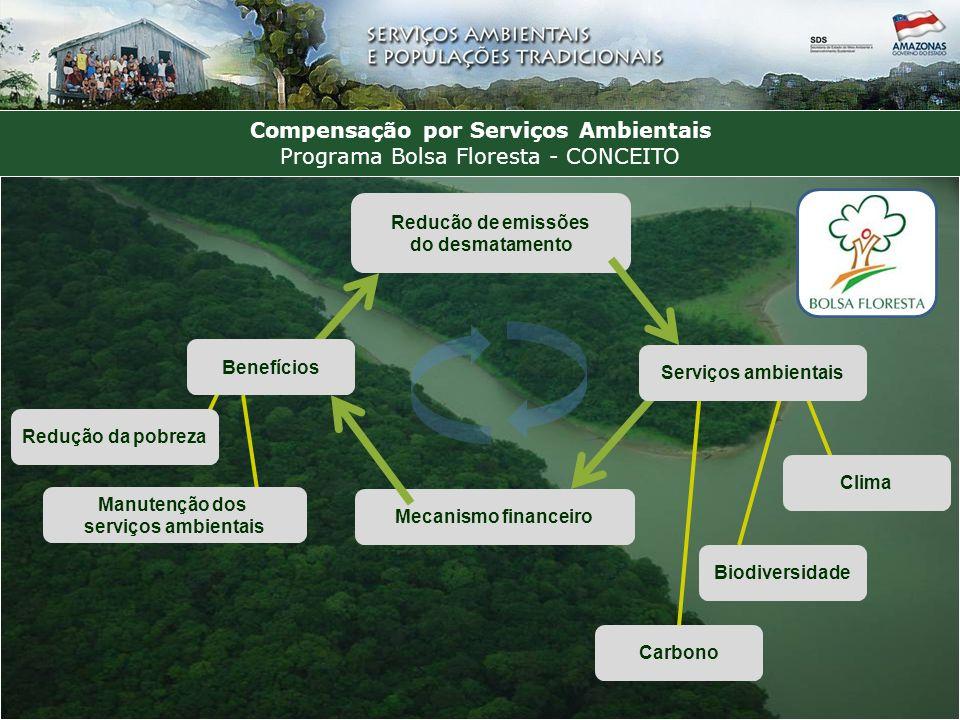 Compensação por Serviços Ambientais