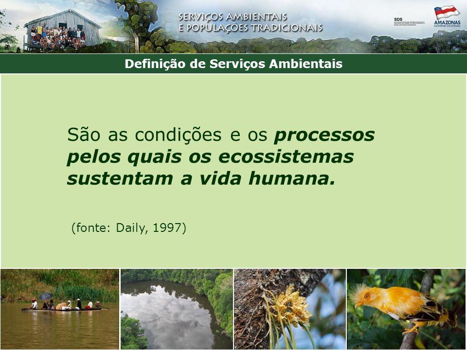 Definição de Serviços Ambientais